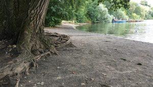 trockene Uferbereiche am Weißen See